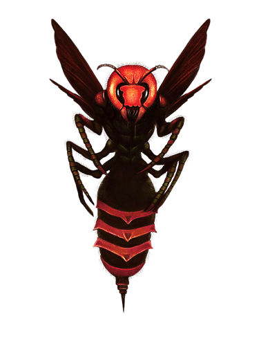 Giant Fire Bee